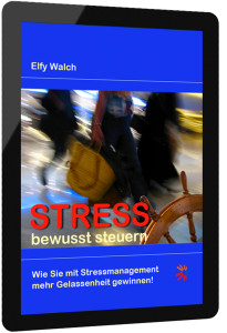 e-book-Stressbewusststeuern